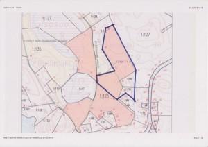 Iso-orvokkiniityn rajat, mukana kaksi erillistä rakennustonttia Orvokki ja Metsätähti