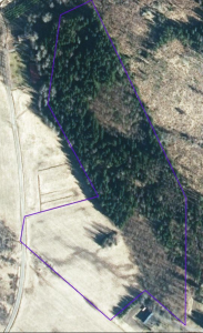 iso-orvokkiniitty maastokartta